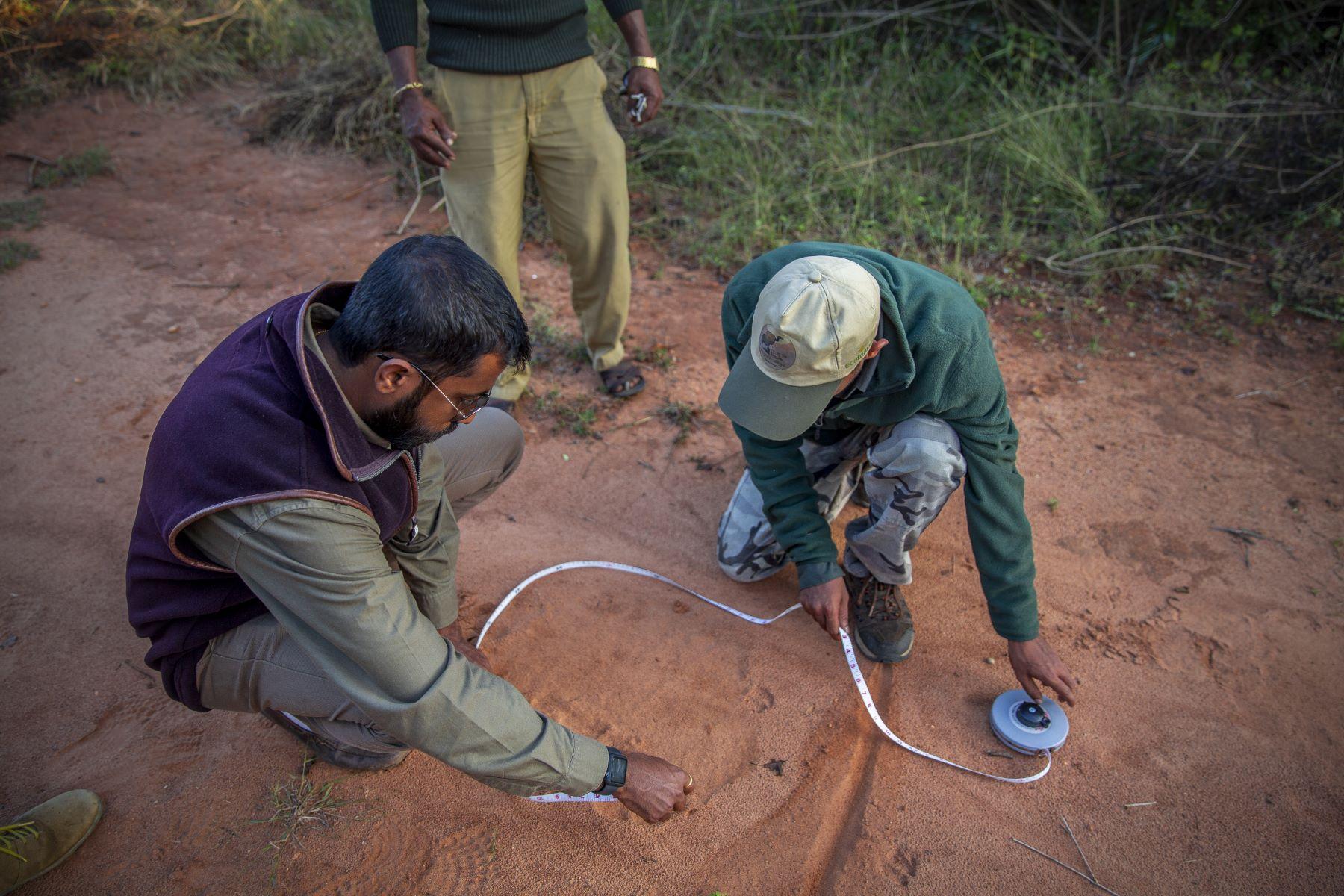 Measuring, Jyothy Karat